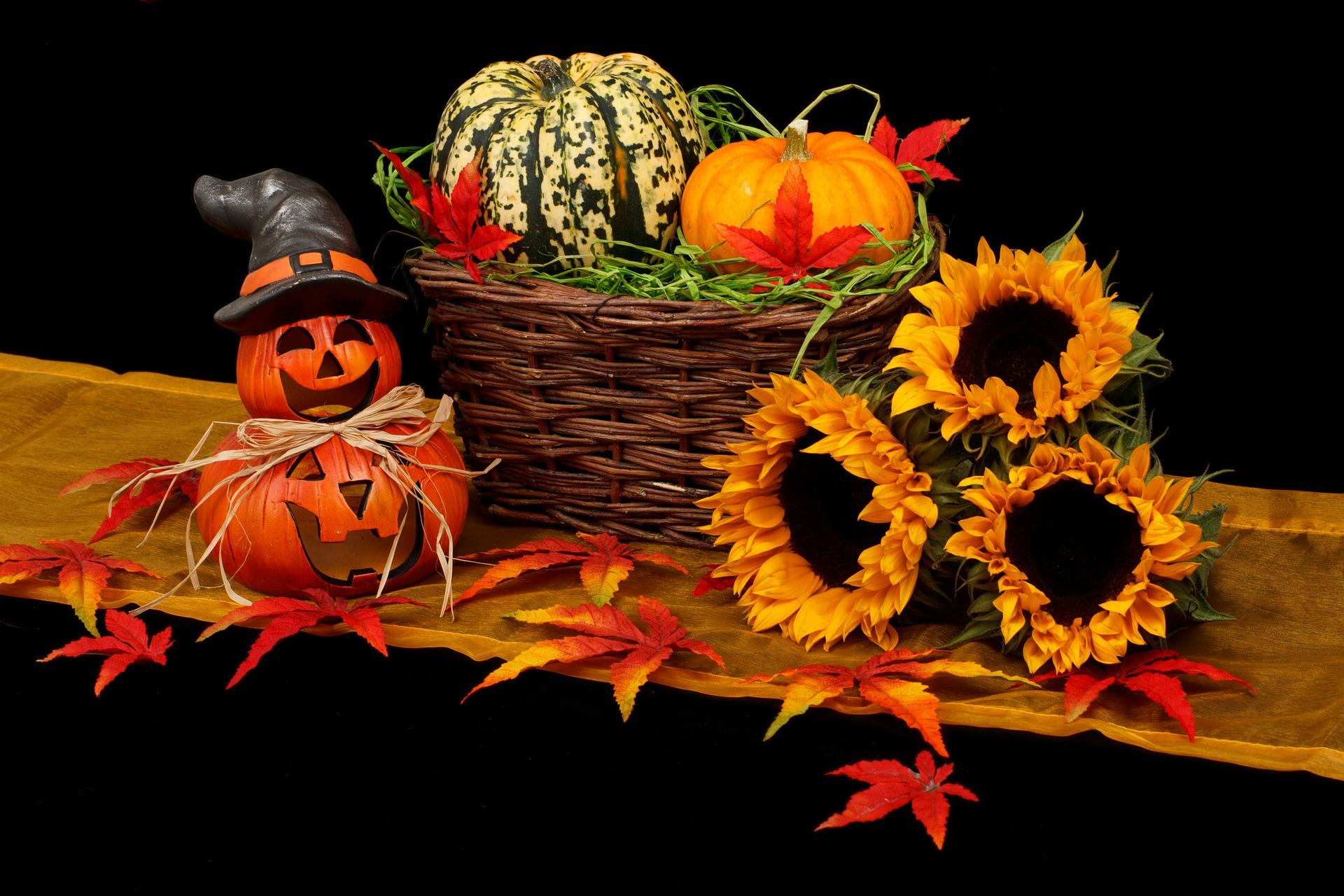 http://www.althea-fleurs.com/wp-content/uploads/2019/10/autumn-20461_1920-1-1.jpg