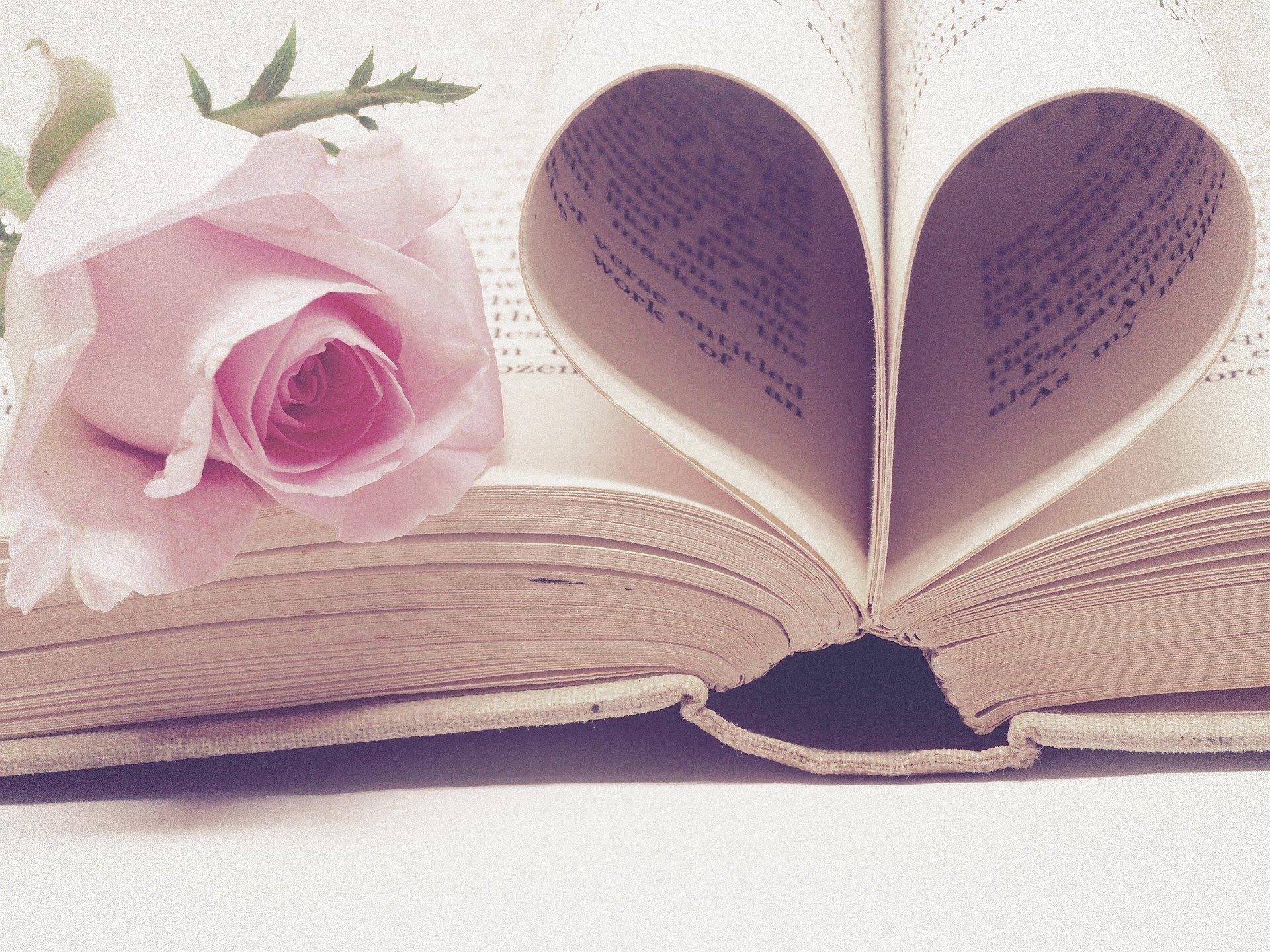 http://www.althea-fleurs.com/wp-content/uploads/2020/01/literature-3060241_1920-1.jpg