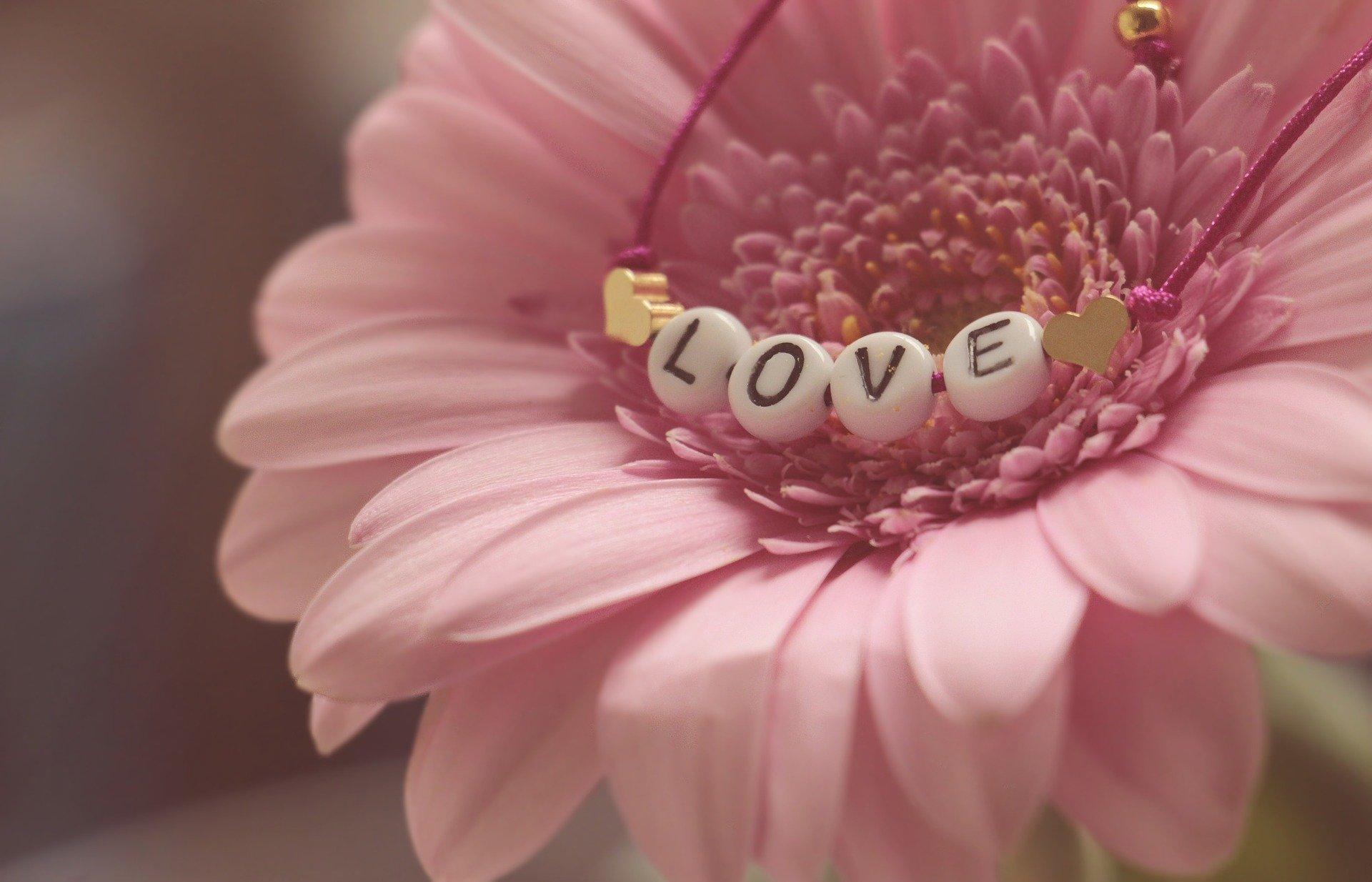 http://www.althea-fleurs.com/wp-content/uploads/2020/01/love-3388622_1920-1.jpg